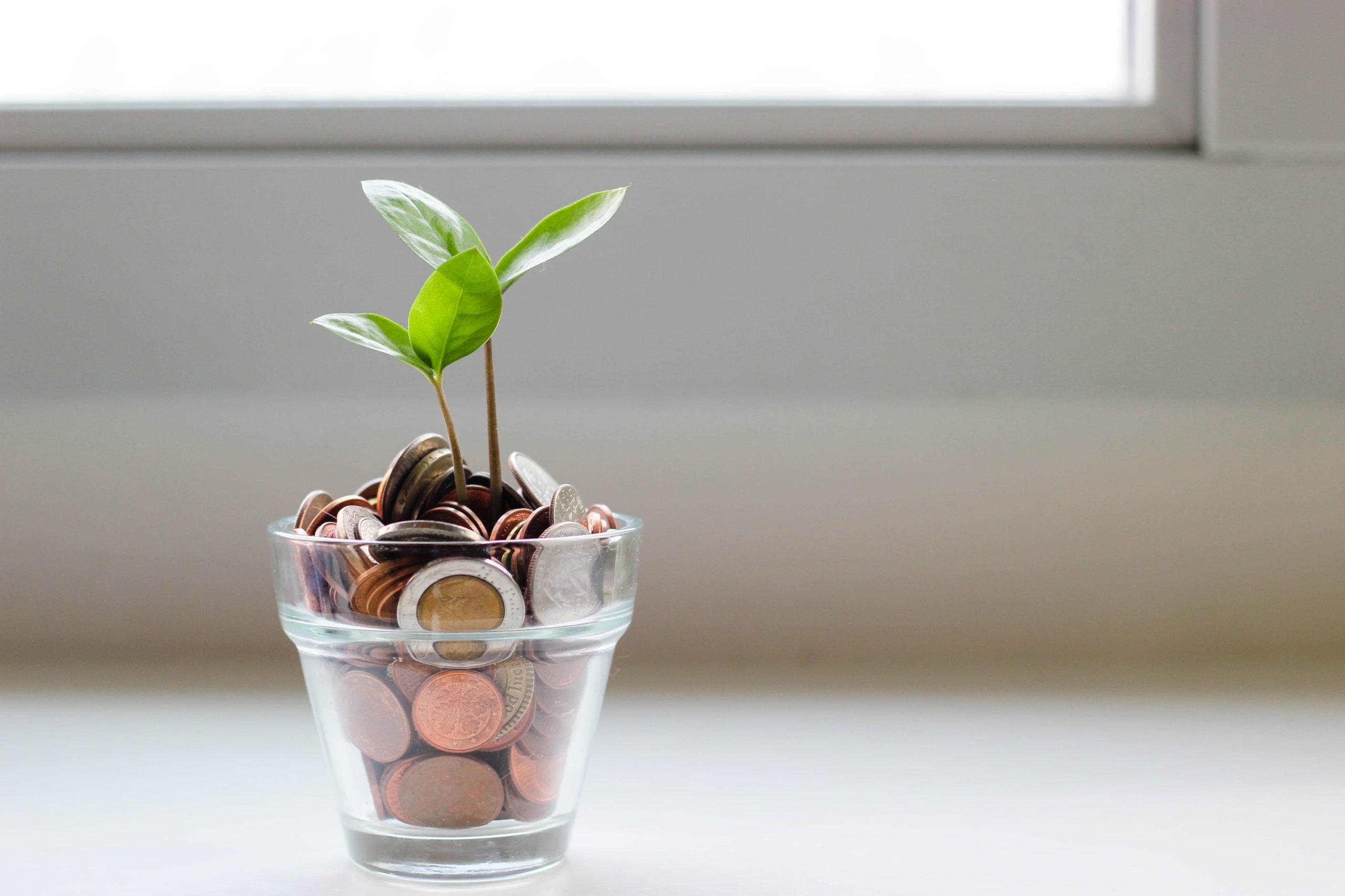 Punto de venta Prestashop: Venta internacional con Braintree